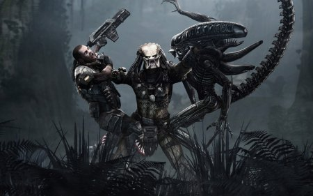Обзор Aliens vs. Predator
